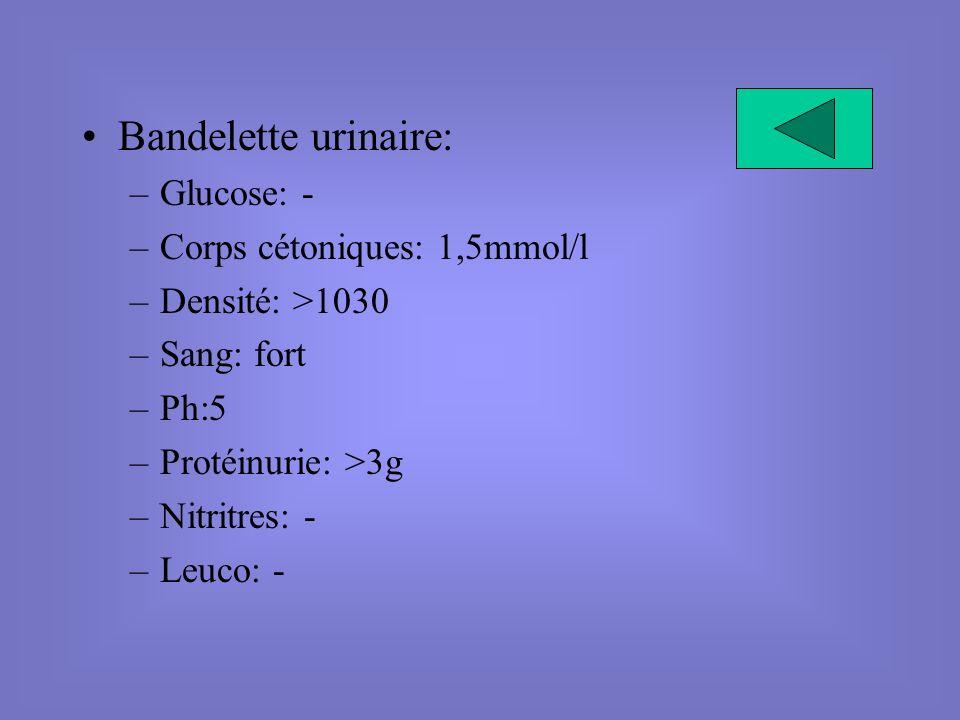 Bandelette urinaire: –Glucose: - –Corps cétoniques: 1,5mmol/l –Densité: >1030 –Sang: fort –Ph:5 –Protéinurie: >3g –Nitritres: - –Leuco: -