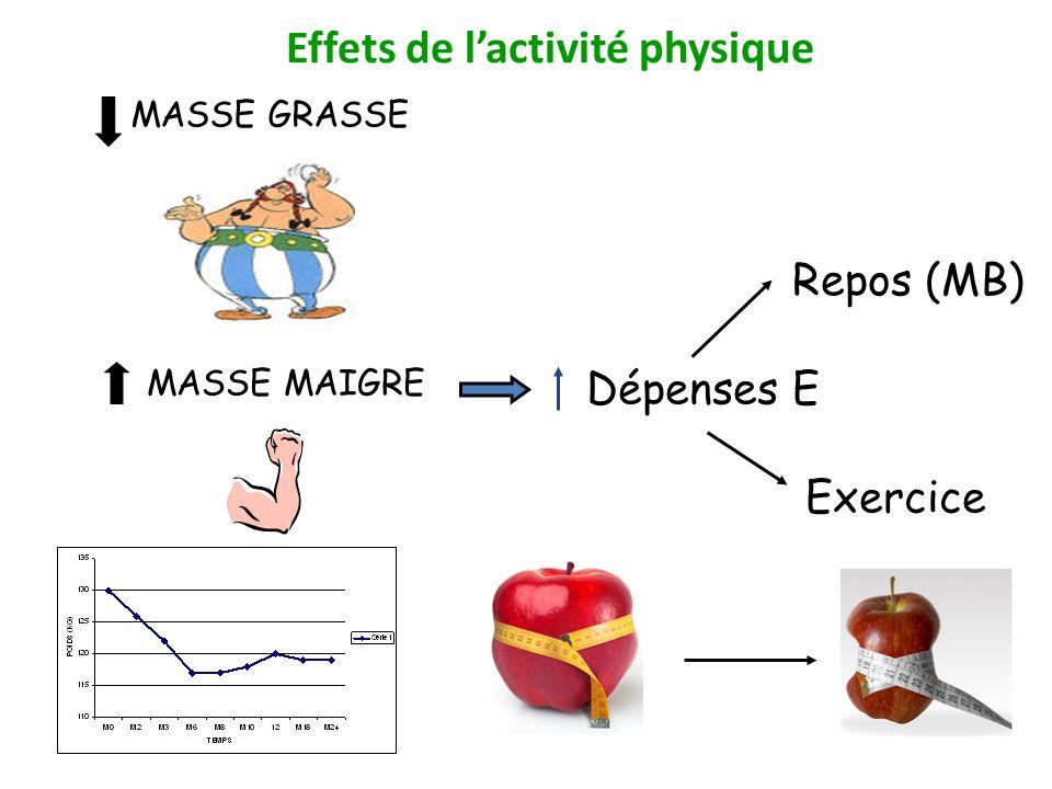 Dépenses E Exercice Repos (MB) Effets de lactivité physique MASSE GRASSE MASSE MAIGRE