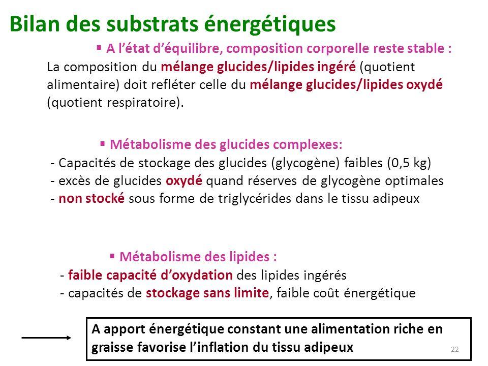 22 Bilan des substrats énergétiques A létat déquilibre, composition corporelle reste stable : La composition du mélange glucides/lipides ingéré (quoti