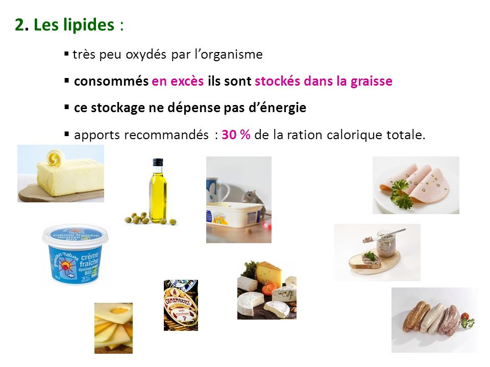2. Les lipides : très peu oxydés par lorganisme consommés en excès ils sont stockés dans la graisse ce stockage ne dépense pas dénergie apports recomm