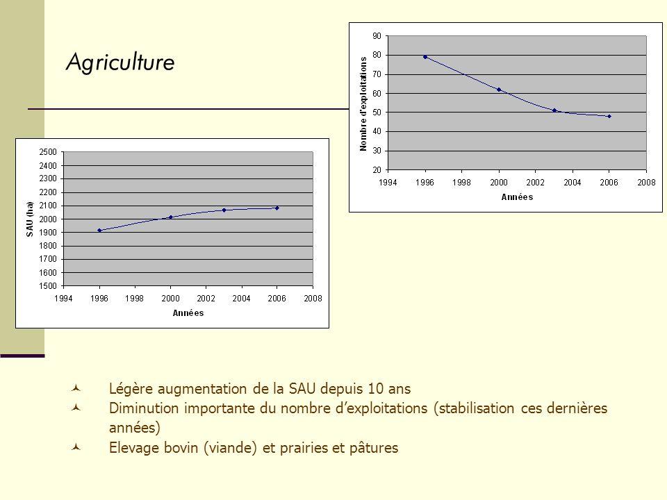 Agriculture Légère augmentation de la SAU depuis 10 ans Diminution importante du nombre dexploitations (stabilisation ces dernières années) Elevage bovin (viande) et prairies et pâtures