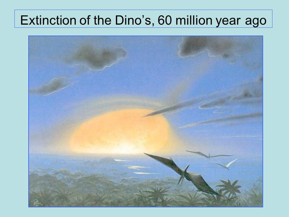 Extinction of the Dinos, 60 million year ago