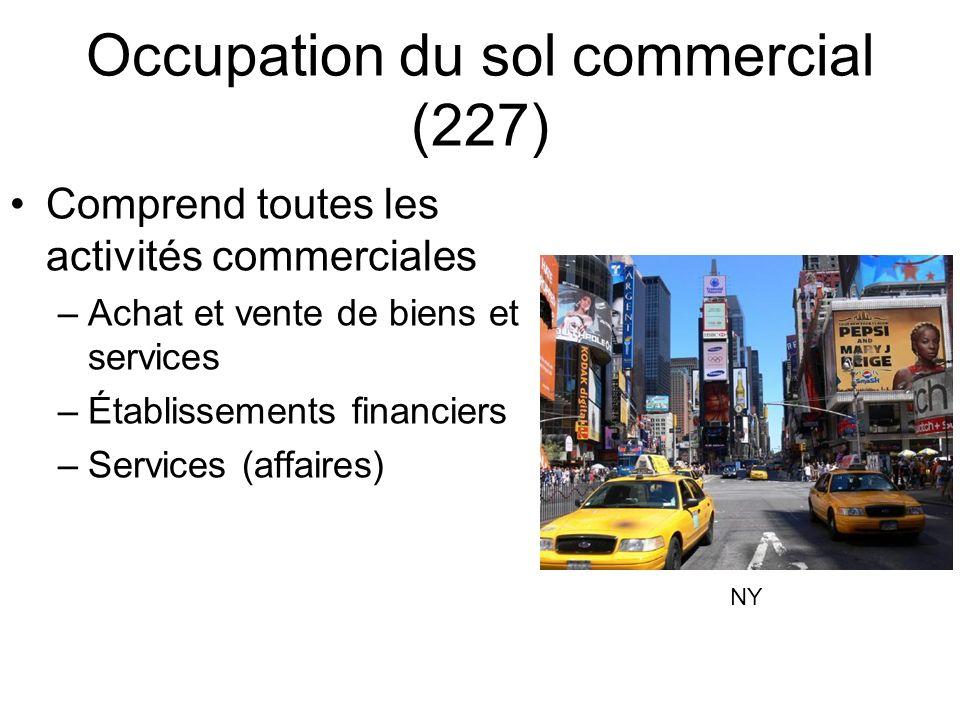 Occupation du sol commercial (227) Comprend toutes les activités commerciales –Achat et vente de biens et services –Établissements financiers –Services (affaires) NY