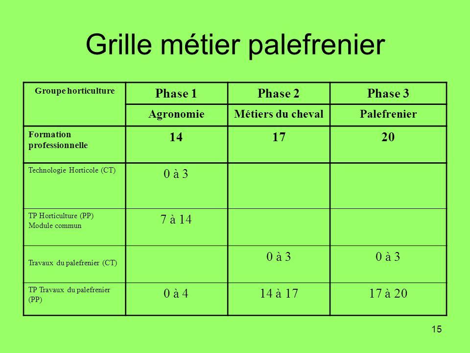 15 Grille métier palefrenier Groupe horticulture Phase 1Phase 2Phase 3 AgronomieMétiers du chevalPalefrenier Formation professionnelle 141720 Technolo