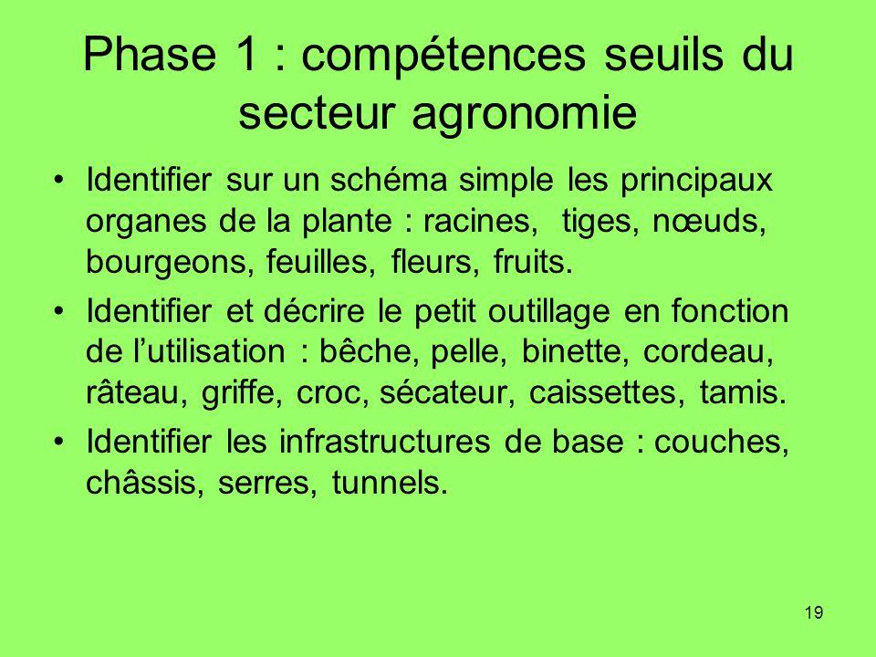 19 Phase 1 : compétences seuils du secteur agronomie Identifier sur un schéma simple les principaux organes de la plante : racines, tiges, nœuds, bour