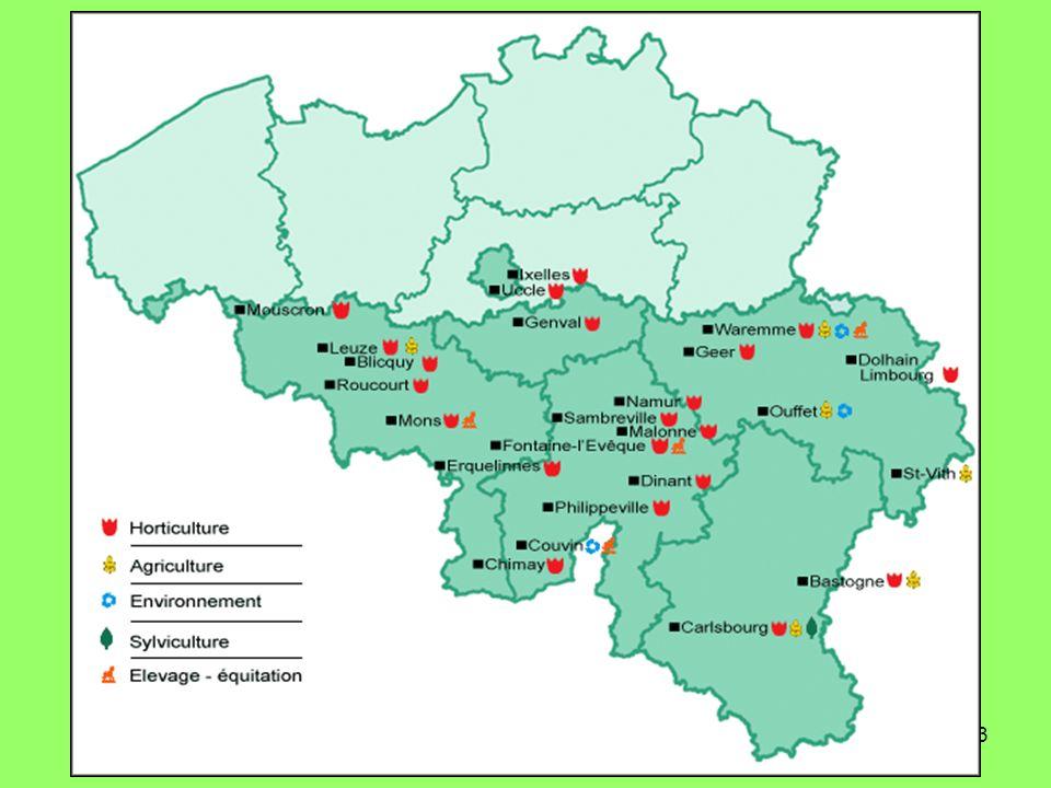 14 Groupe horticulture Phase 1Phase 2Phase 3 AgronomieHorticultureOuvrier en exploitation horticole Ouvrier jardinier Ouvrier forestier Formation professionnelle 141720 Technologie (CT) 0 à 3 TP Horticulture (PP) Module commun 7 à 146 à 13 TP Horticulture (PP) 417 à 20 TP Entretien des parcs et jardins (PP) 417 à 20 TP Sylviculture (PP) 417 à 20 TP Travaux du palefrenier (PP) 0 à 4