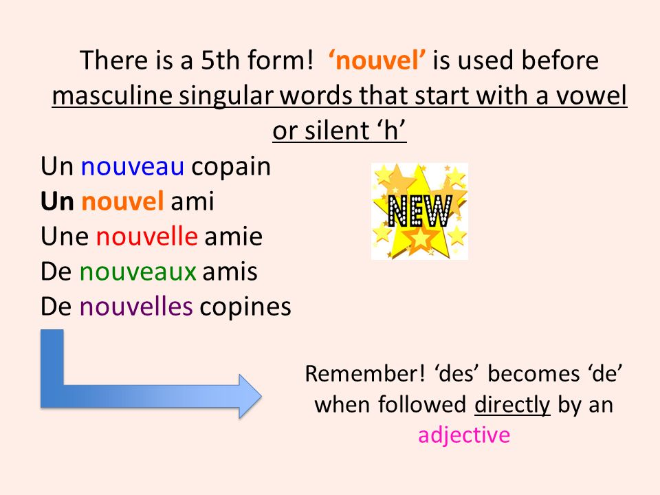 Beautiful beau – m/s belle –f/s beaux –m/p belles – f/p You should already know these 4 forms of the adjective.