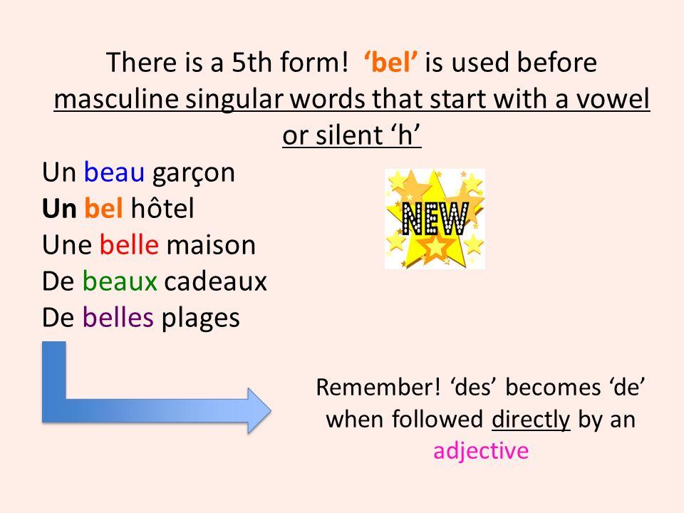 Note: this 5th form only applies when the adjective is used before the noun… e.g un nouvel appartement Un vieil acteur Un bel oiseau Vs lappartement est nouveau Cet acteur est vieux loiseau est beau