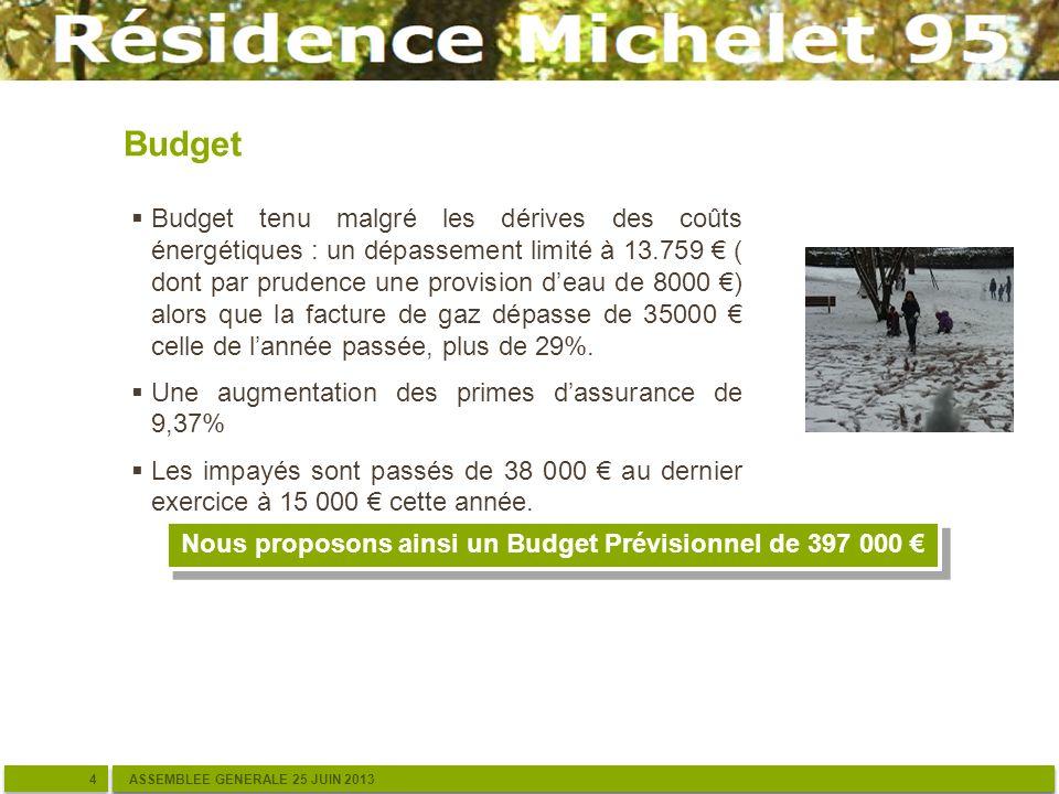 Budget 4 4 ASSEMBLEE GENERALE 25 JUIN 2013 Budget tenu malgré les dérives des coûts énergétiques : un dépassement limité à 13.759 ( dont par prudence une provision deau de 8000 ) alors que la facture de gaz dépasse de 35000 celle de lannée passée, plus de 29%.