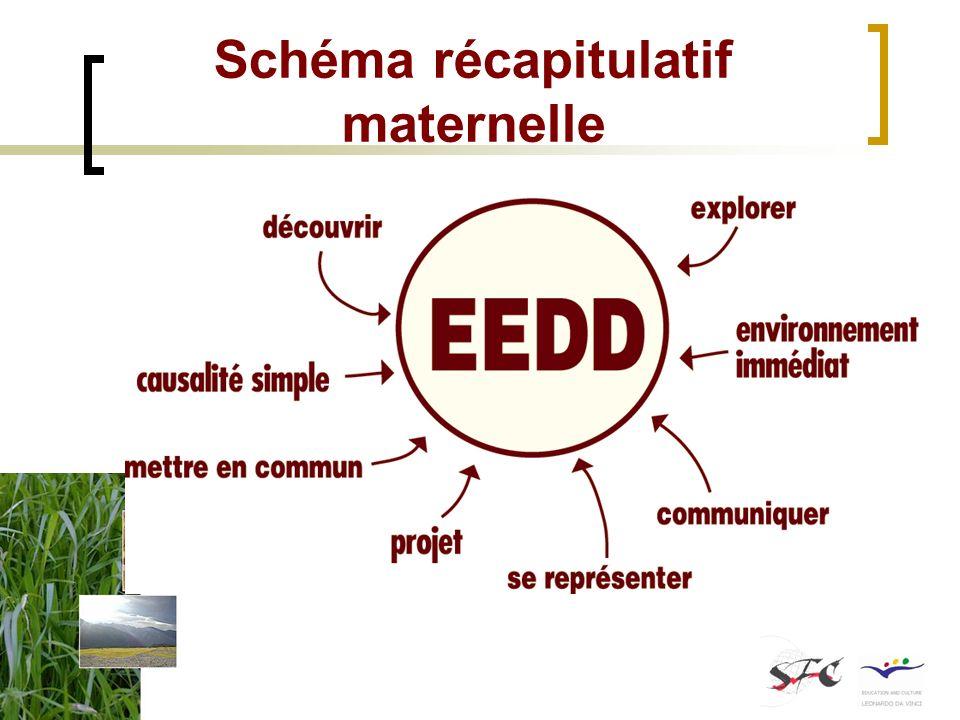 Schéma récapitulatif maternelle