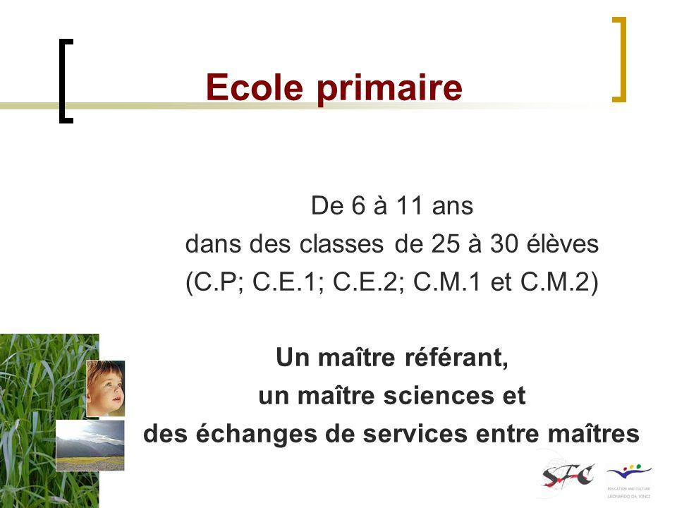 Ecole primaire De 6 à 11 ans dans des classes de 25 à 30 élèves (C.P; C.E.1; C.E.2; C.M.1 et C.M.2) Un maître référant, un maître sciences et des écha