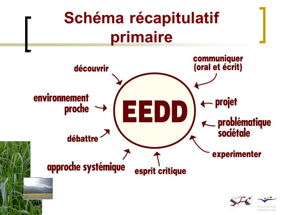 Schéma récapitulatif primaire