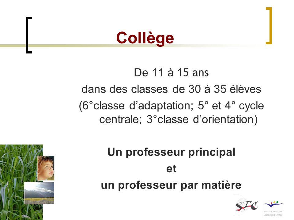 Collège De 11 à 15 ans dans des classes de 30 à 35 élèves (6°classe dadaptation; 5° et 4° cycle centrale; 3°classe dorientation) Un professeur princip