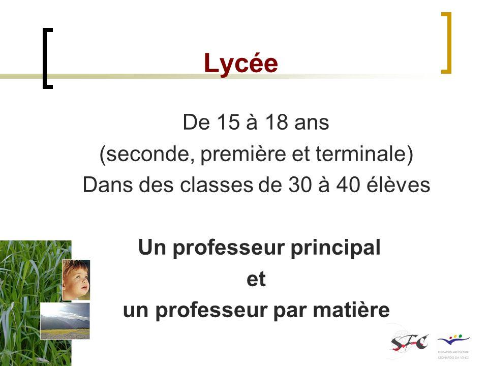 Lycée De 15 à 18 ans (seconde, première et terminale) Dans des classes de 30 à 40 élèves Un professeur principal et un professeur par matière