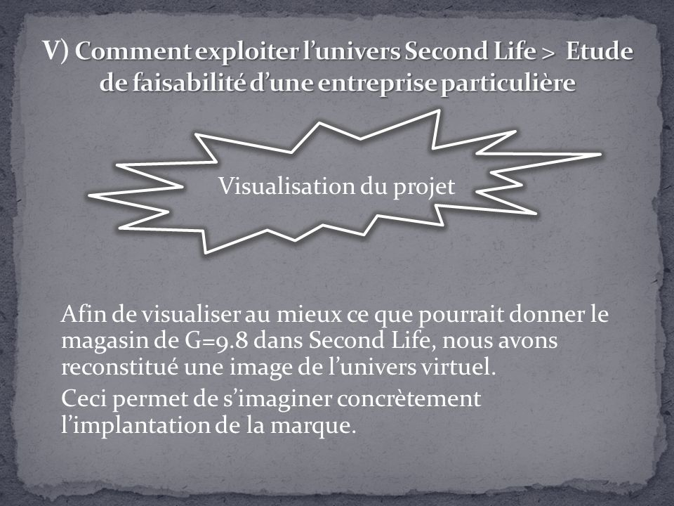Visualisation du projet Afin de visualiser au mieux ce que pourrait donner le magasin de G=9.8 dans Second Life, nous avons reconstitué une image de l