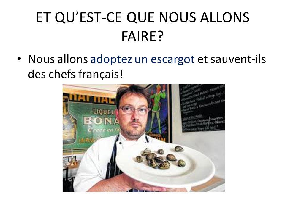 ET QUEST-CE QUE NOUS ALLONS FAIRE? Nous allons adoptez un escargot et sauvent-ils des chefs français!