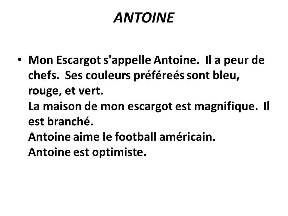 ANTOINE Mon Escargot s'appelle Antoine. Il a peur de chefs. Ses couleurs préféreés sont bleu, rouge, et vert. La maison de mon escargot est magnifique