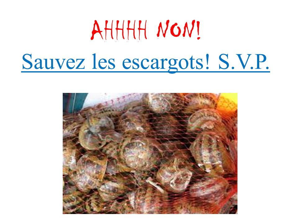 AHHHH NON! Sauvez les escargots! S.V.P.