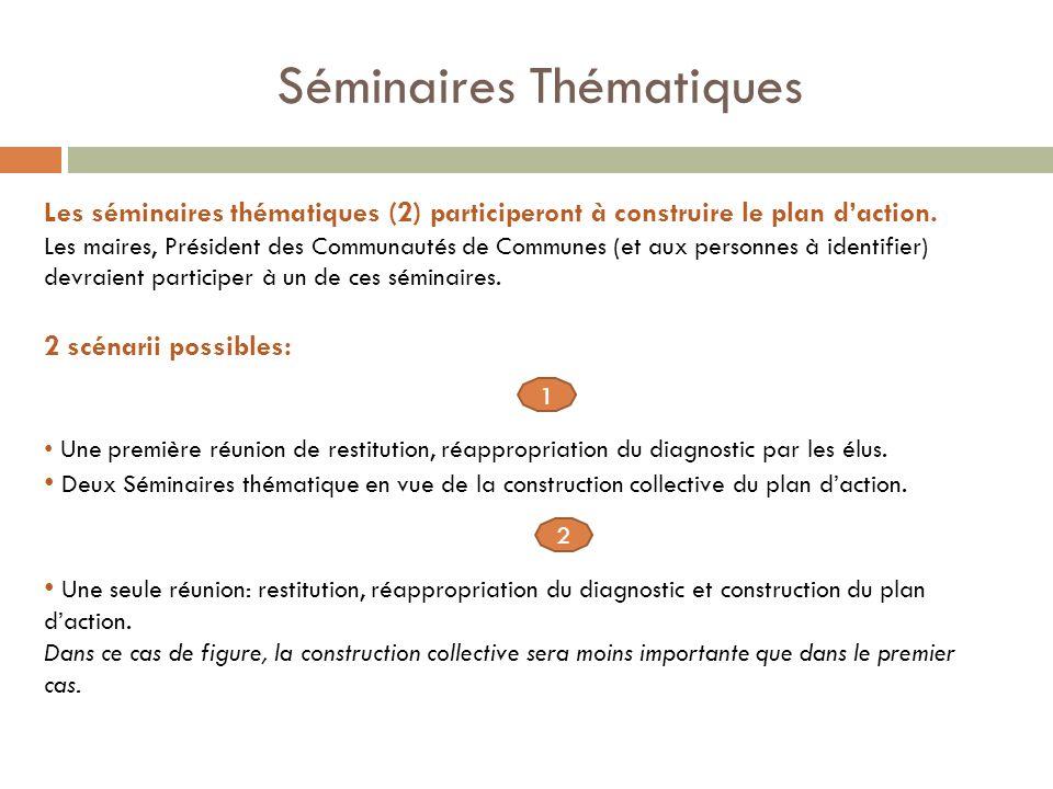 Séminaires Thématiques Les séminaires thématiques (2) participeront à construire le plan daction.