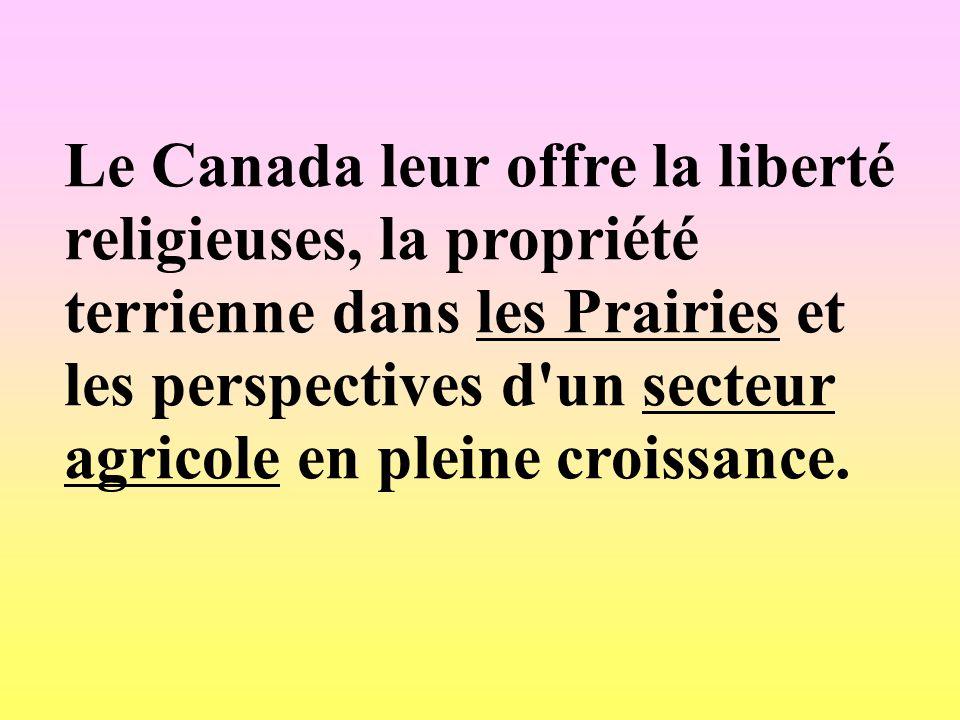 Le Canada leur offre la liberté religieuses, la propriété terrienne dans les Prairies et les perspectives d'un secteur agricole en pleine croissance.