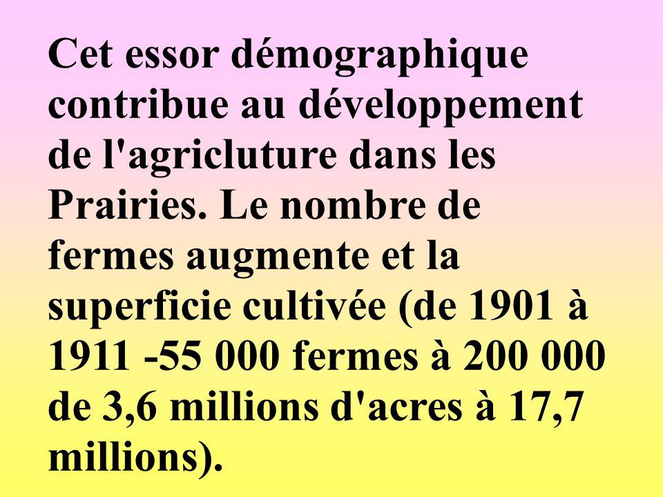 Cet essor démographique contribue au développement de l'agricluture dans les Prairies. Le nombre de fermes augmente et la superficie cultivée (de 1901