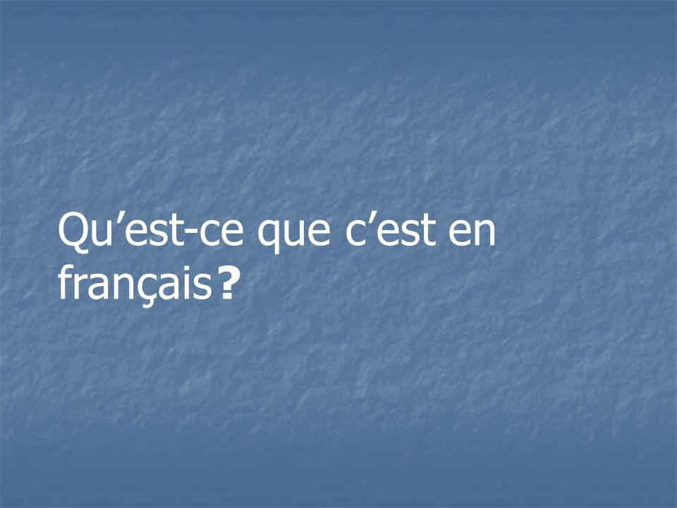 Quest-ce que cest en français ?