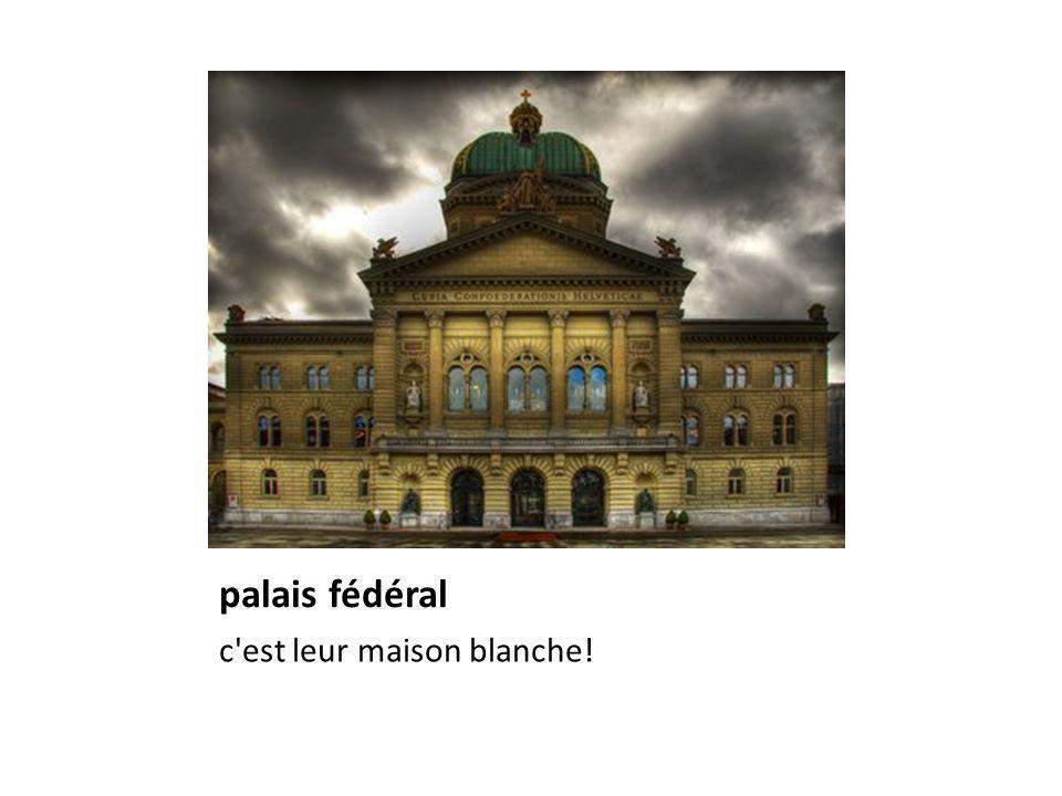 palais fédéral c'est leur maison blanche!