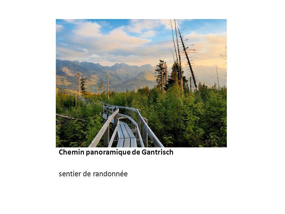 Chemin panoramique de Gantrisch sentier de randonnée
