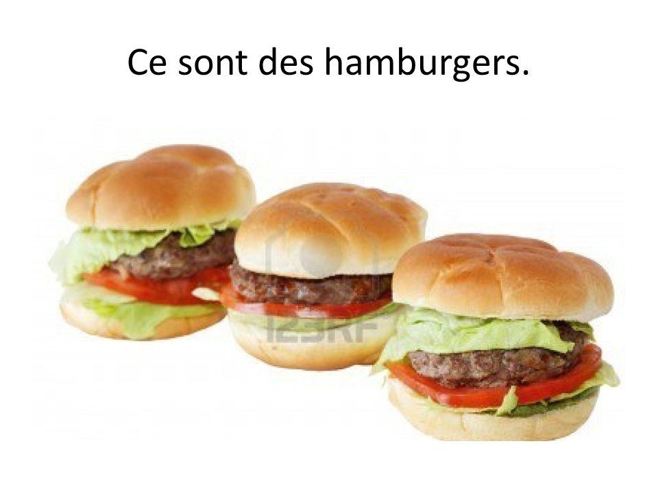 Ce sont des hamburgers.