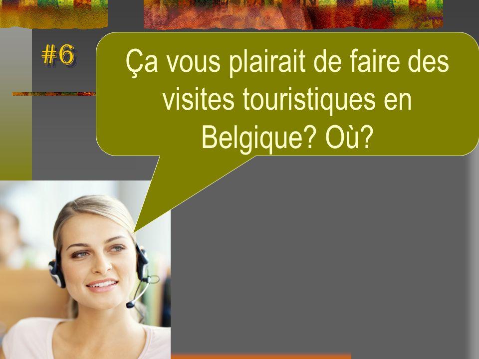 #6 Ça vous plairait de faire des visites touristiques en Belgique? Où?