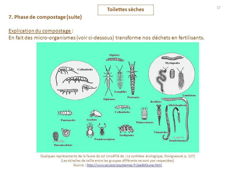 17 Toilettes sèches 7. Phase de compostage (suite) Explication du compostage : En fait des micro-organismes (voir ci-dessous) transforme nos déchets e