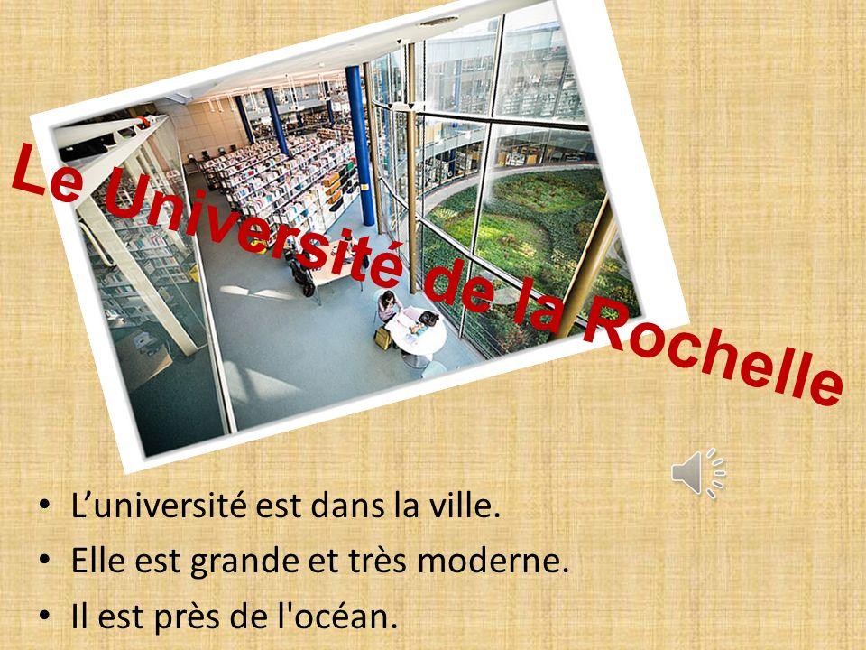 Le Université de la Rochelle Luniversité est dans la ville.