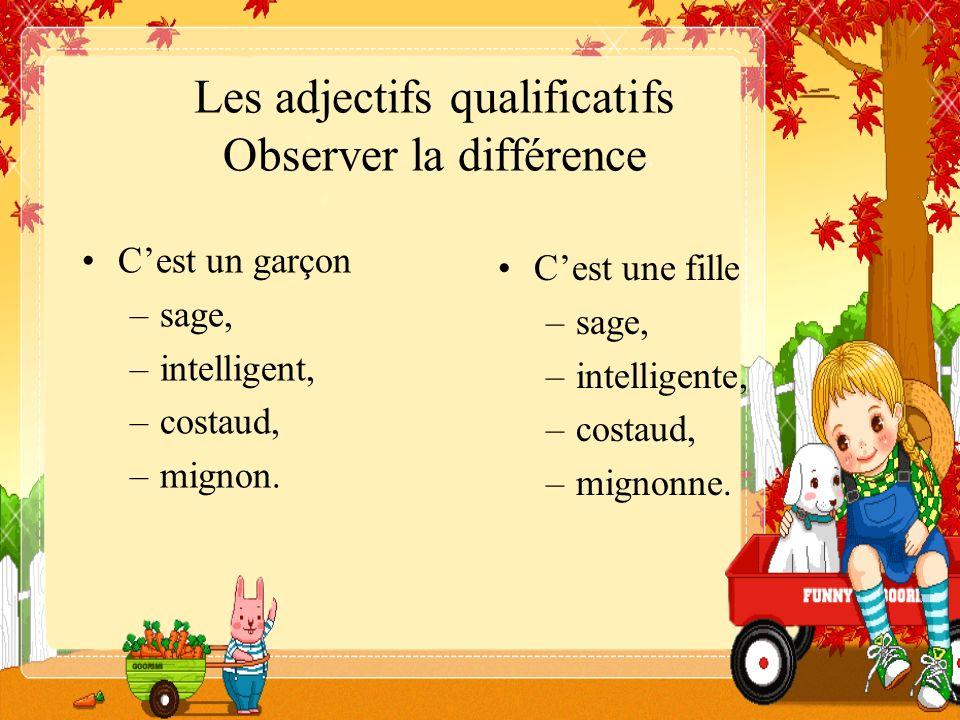 Les adjectifs qualificatifs Observer la différence Cest un garçon –sage, –intelligent, –costaud, –mignon. Cest une fille –sage, –intelligente, –costau