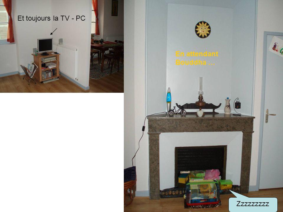 En attendant Bouddha … Et toujours la TV - PC Zzzzzzzzz