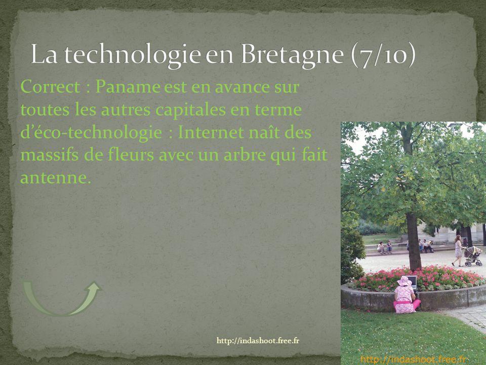Correct : Paname est en avance sur toutes les autres capitales en terme déco-technologie : Internet naît des massifs de fleurs avec un arbre qui fait antenne.