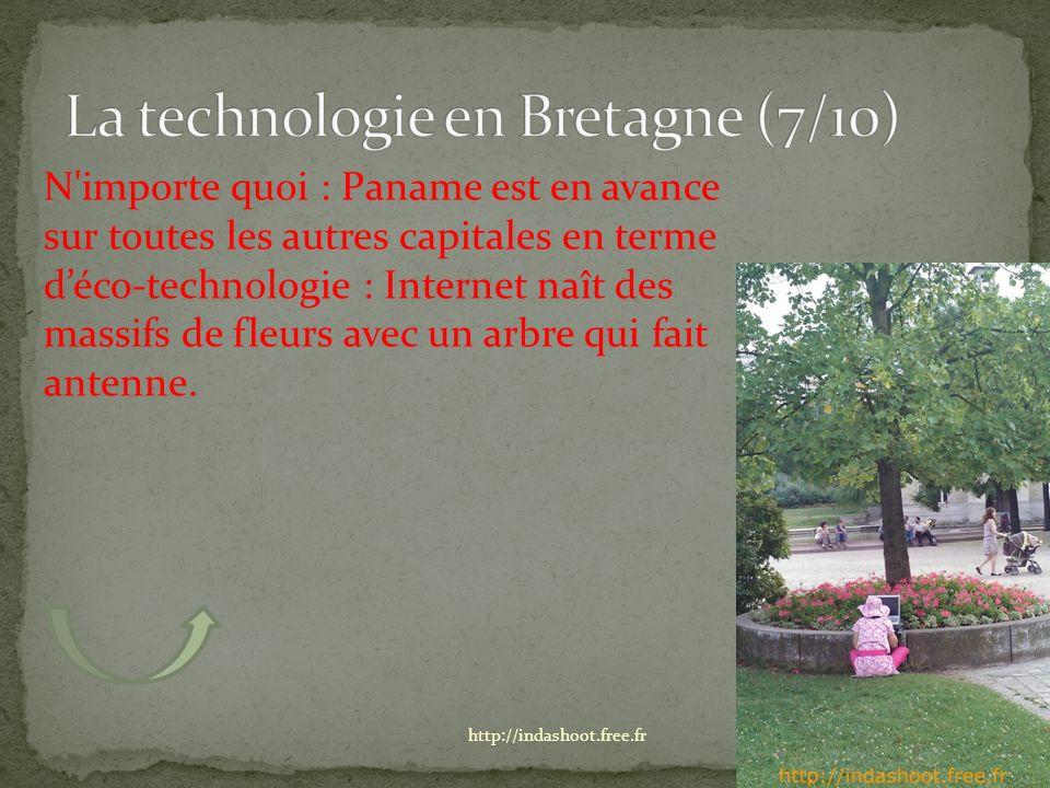 N importe quoi : Paname est en avance sur toutes les autres capitales en terme déco-technologie : Internet naît des massifs de fleurs avec un arbre qui fait antenne.