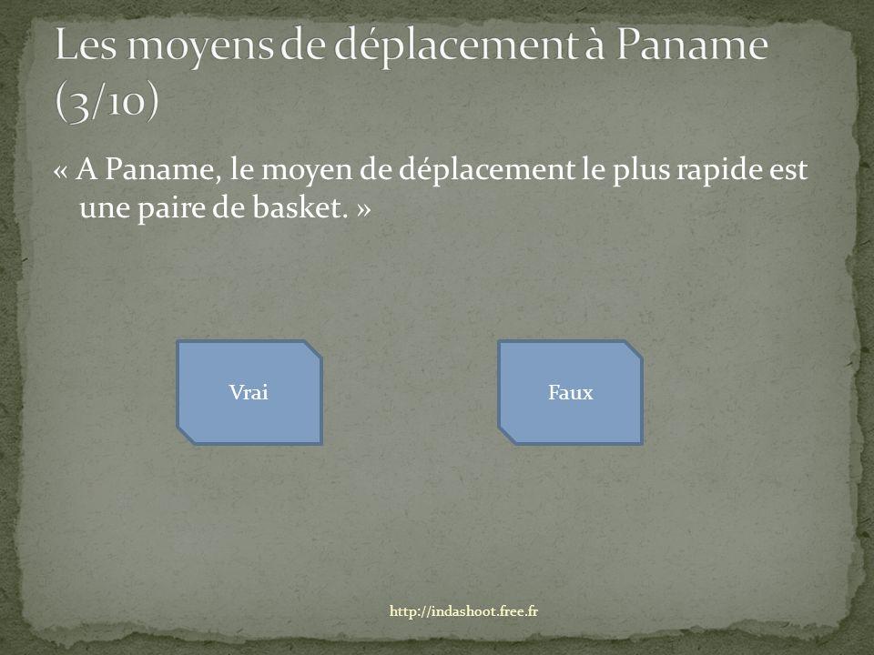 « A Paname, le moyen de déplacement le plus rapide est une paire de basket.