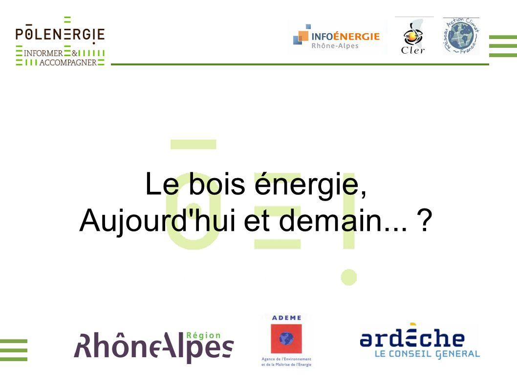 Le bois énergie, Aujourd'hui et demain... ?