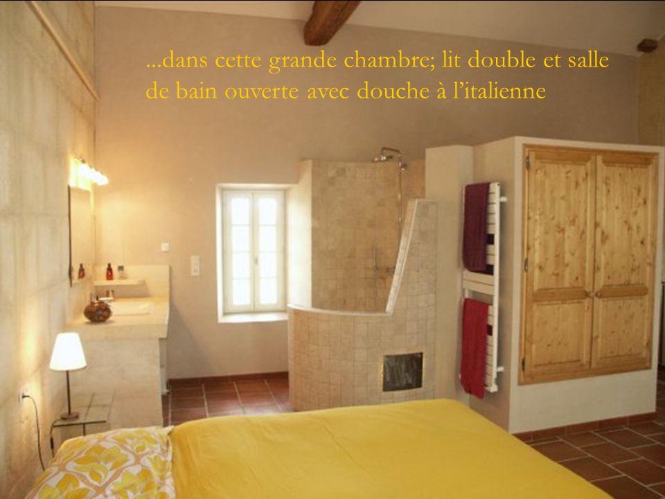 A létage, relaxez vous......dans cette grande chambre; lit double et salle de bain ouverte avec douche à litalienne