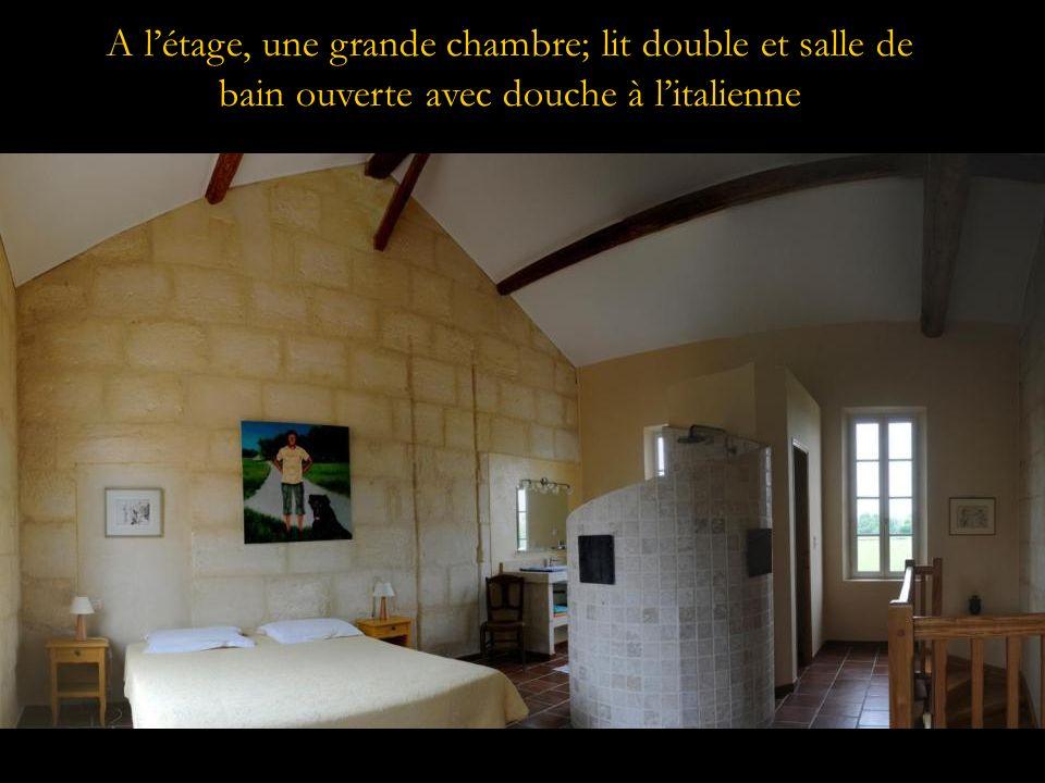 A létage, une grande chambre; lit double et salle de bain ouverte avec douche à litalienne