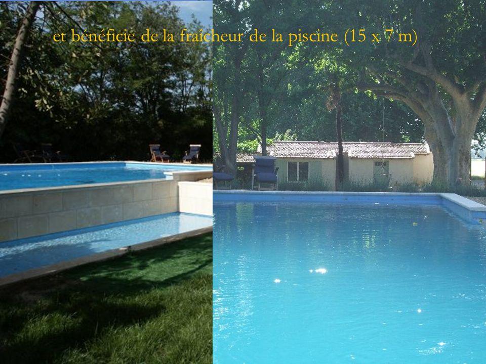 et bénéficie de la fraîcheur de la piscine (15 x 7 m)