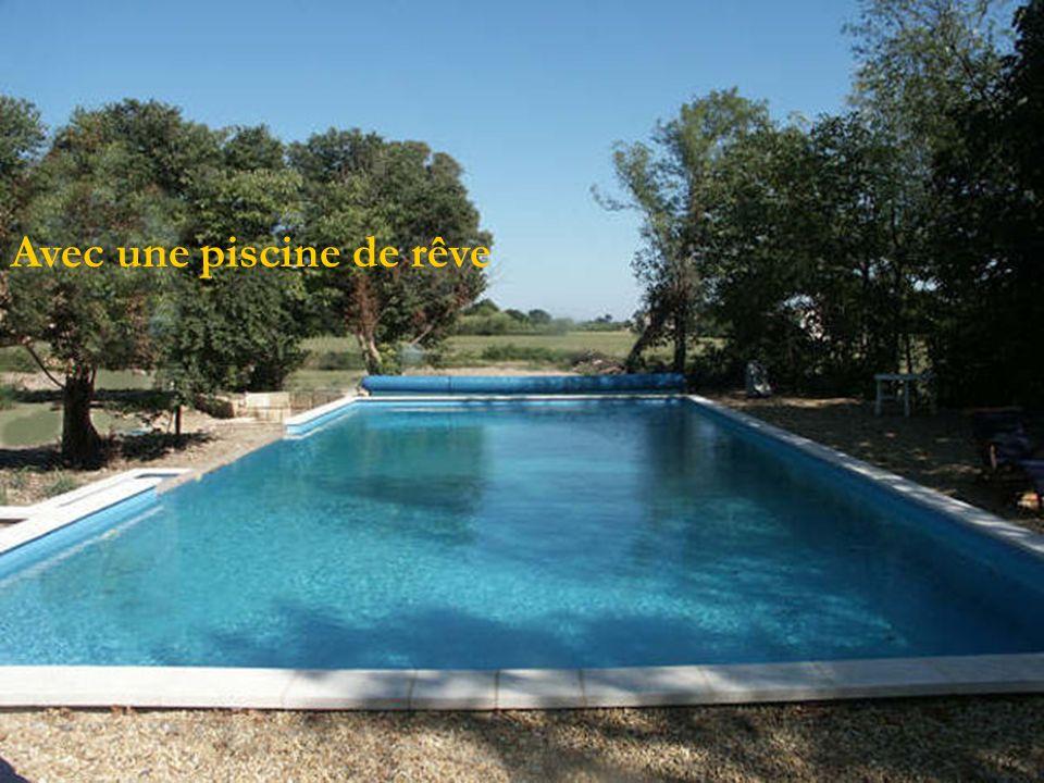 Avec une piscine de rêve