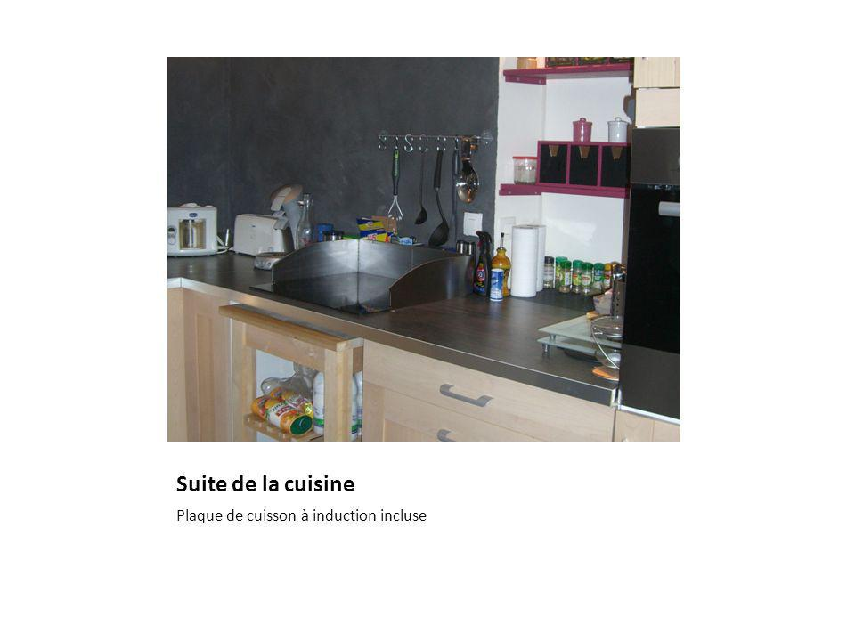 Suite de la cuisine Plaque de cuisson à induction incluse