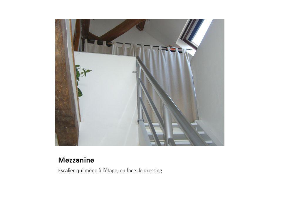 Mezzanine Escalier qui mène à létage, en face: le dressing