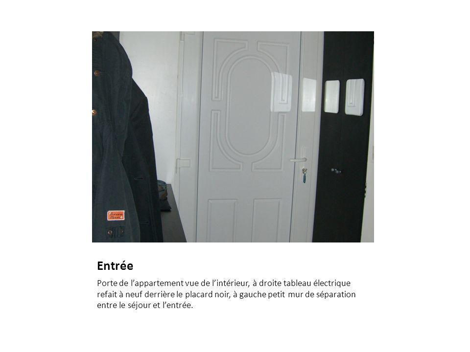 Entrée Porte de lappartement vue de lintérieur, à droite tableau électrique refait à neuf derrière le placard noir, à gauche petit mur de séparation entre le séjour et lentrée.