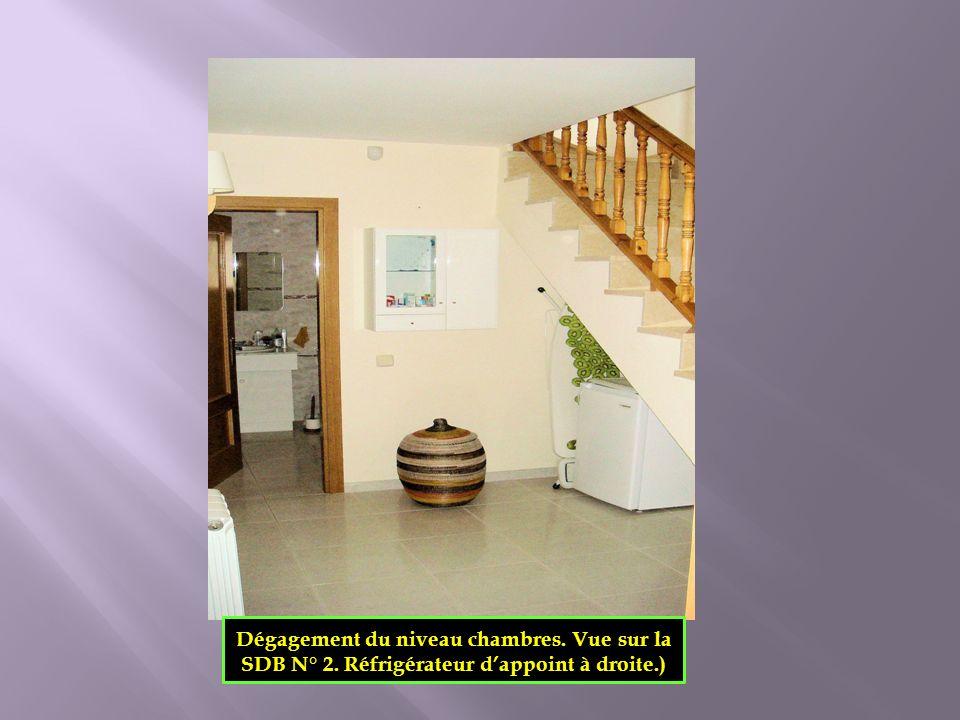 Dégagement du niveau chambres. Vue sur la SDB N° 2. Réfrigérateur dappoint à droite.)