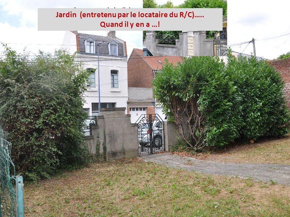 Jardin (entretenu par le locataire du R/C)….. Quand il y en a …!