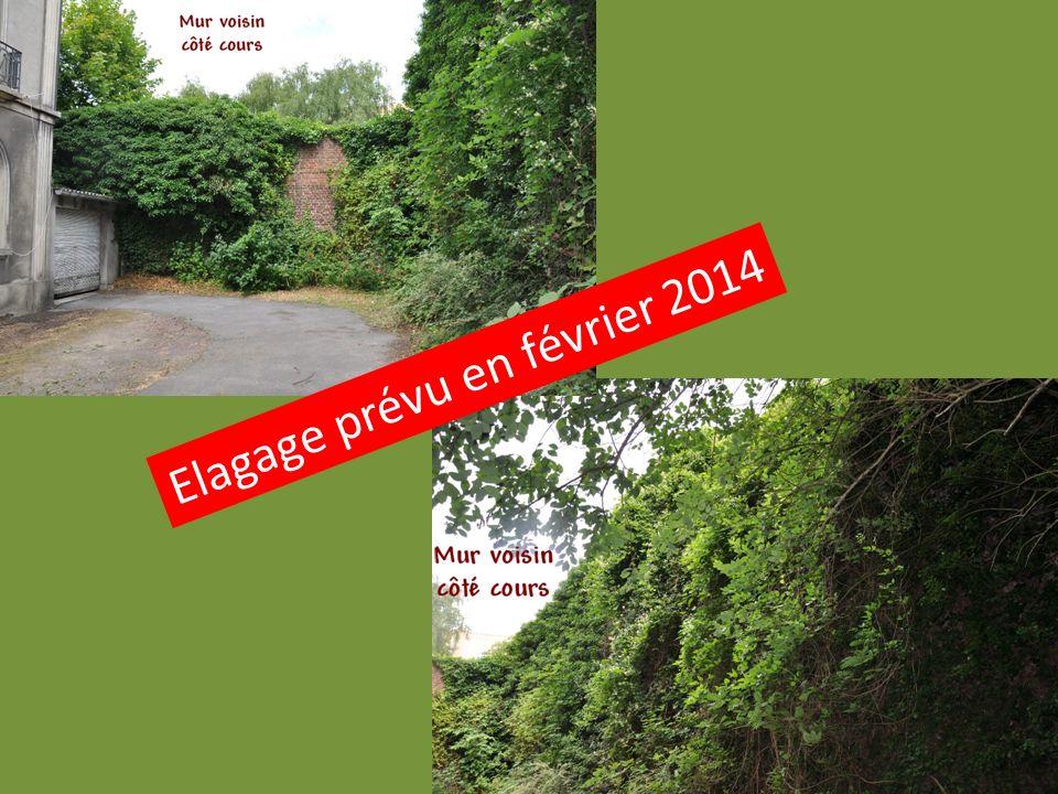 Elagage prévu en février 2014