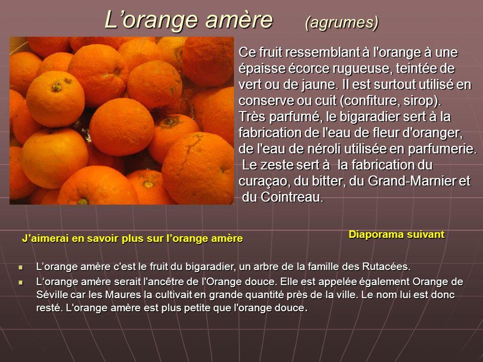 Lorange amère (agrumes) Ce fruit ressemblant à l'orange à une épaisse écorce rugueuse, teintée de vert ou de jaune. Il est surtout utilisé en conserve