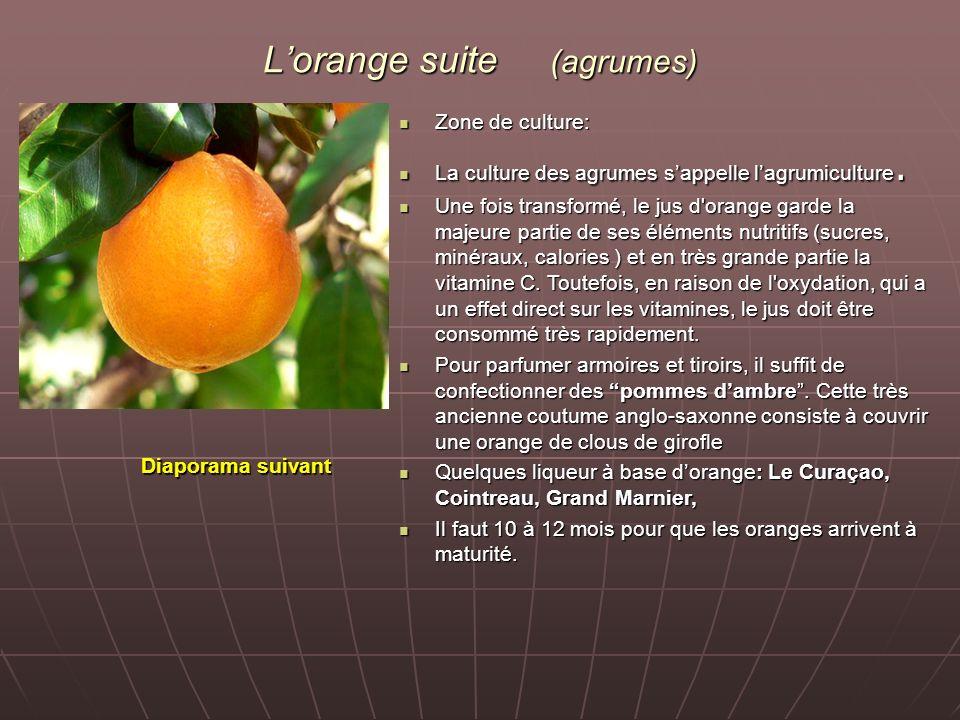 Lorange suite (agrumes) Zone de culture: Zone de culture: La culture des agrumes sappelle lagrumiculture. La culture des agrumes sappelle lagrumicultu